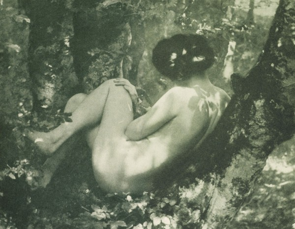 Die Kunst in der Photographie : 1907