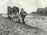 Ploughing on the South Downs