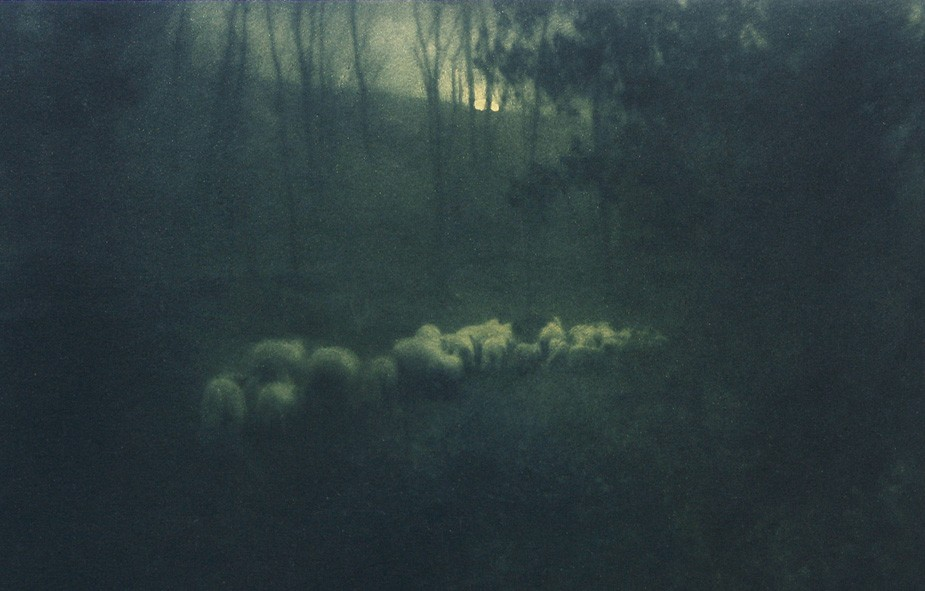 11-blog-pastoral-moonlight-edward-steichen-camera-work-19