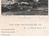 New York Photogravure Company trade card