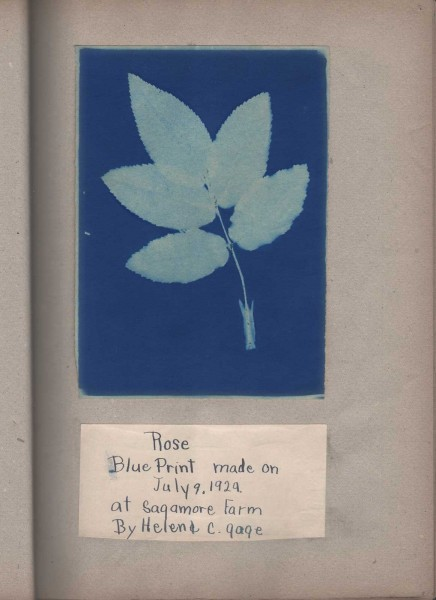 Blue Print Albums by Helen Chase Gage
