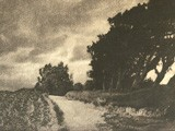 Untitled Landscape with Roadway
