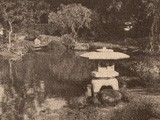 Japanese Tea Garden Pond with Stone Lantern