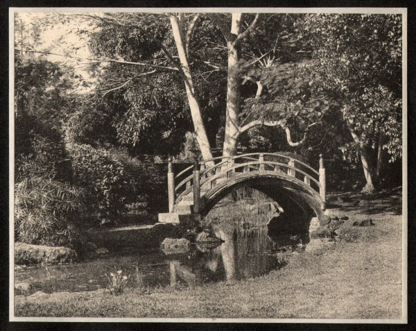 Japanese Tea Garden Bridge : Moanalua Park