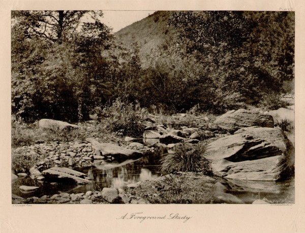 Bits of Nature: Ten Photogravures of American Scenery