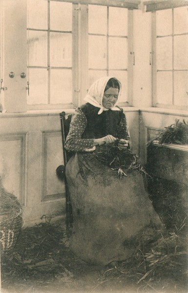 Woman Grafting Rootstock