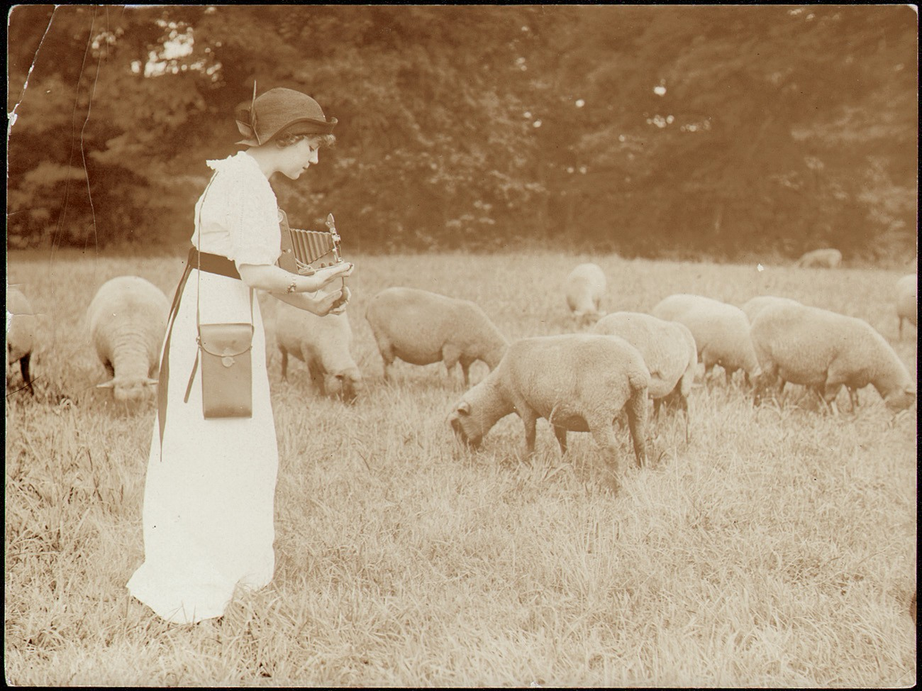 Kodak Girl in Sheep Field | PhotoSeed