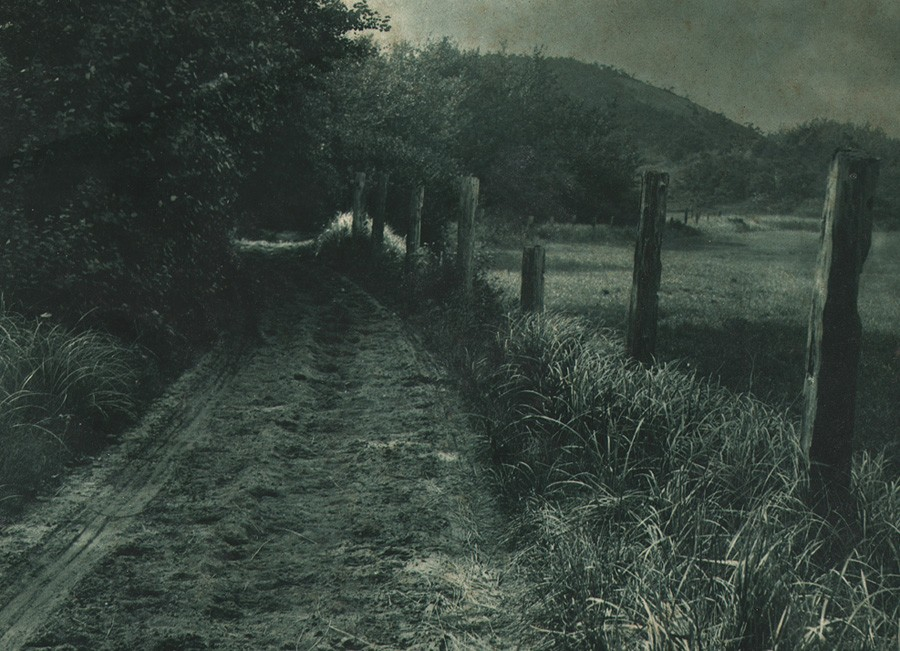 blog-ruth-kaplan-jr-peterson-meadow-road-carbon-print-1906