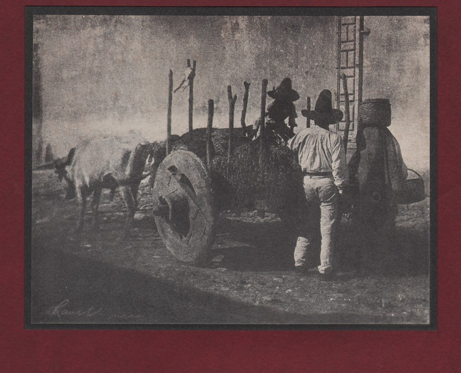 12-an-ox-cart-by-henry-ravell-in-1904-art-in-photography